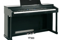 YP300