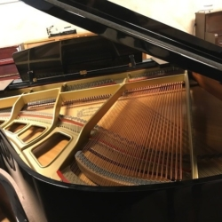 ike NEW Yamaha Disklavier Baby Grand Piano – $9,500
