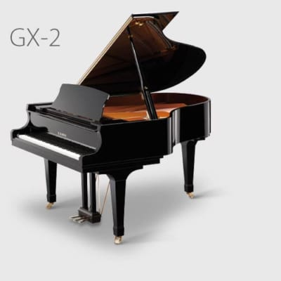 GX-2 BLAK CLASSIC SALON GRAND