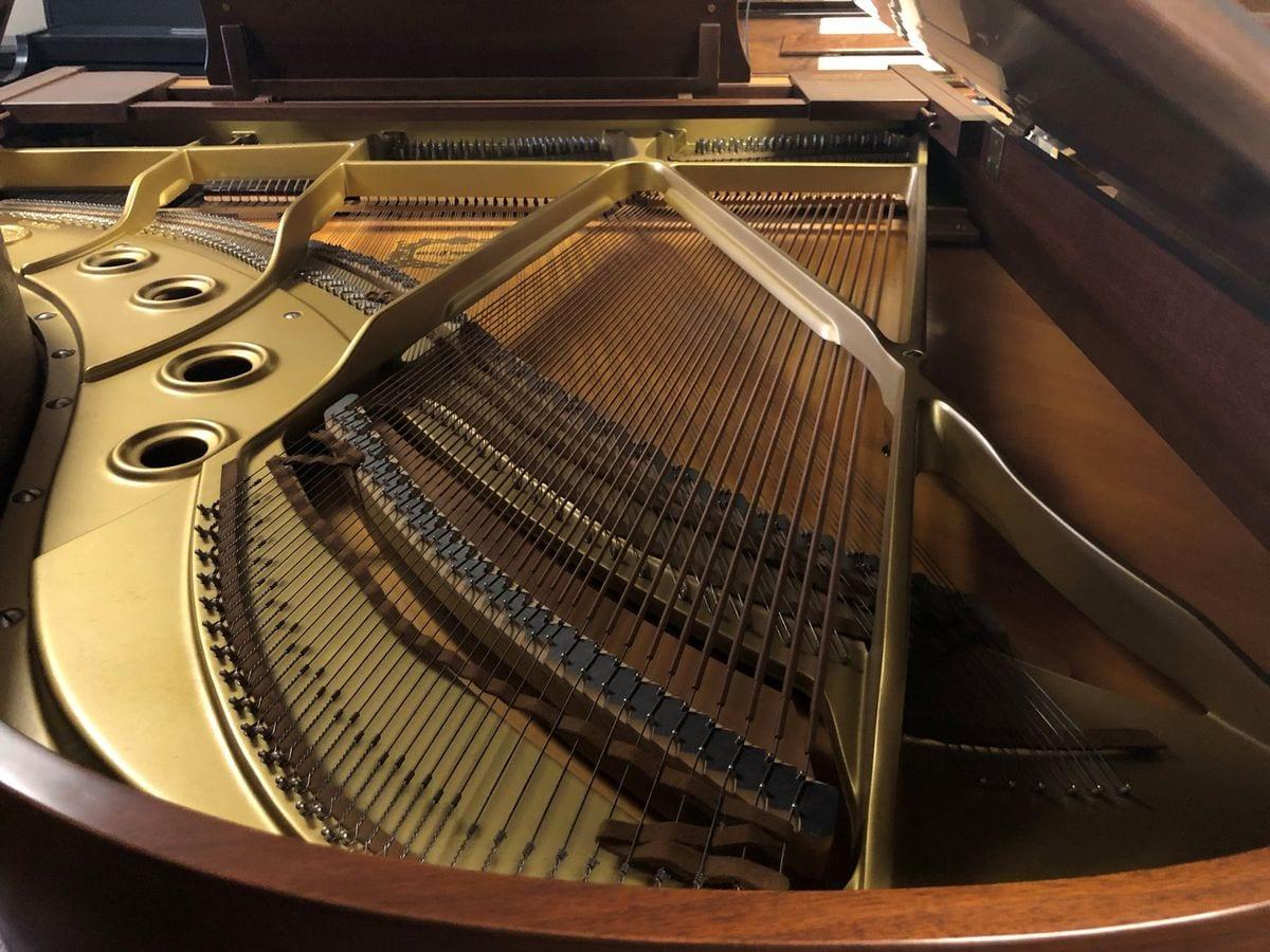 "Yamaha G3 6'1"" Grand Piano in Satin American Walnut"